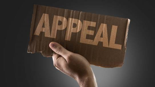 Content Conundrum: Why a Petition for Belated Appeal is not an Appellate Brief